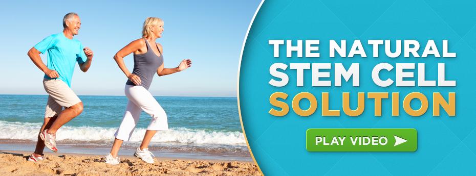 Stem Cell Nutrition